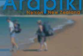 bed & breakfast accommodation nelson new zealand